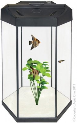 Aqua One  Panoramic 30 Hexagonal aquarium   COLLECTION ONLY 56134